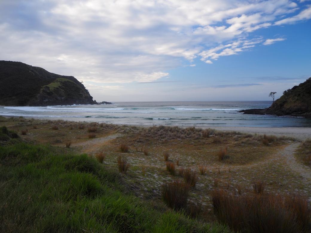 Cape Reinga Campsite 2.jpg