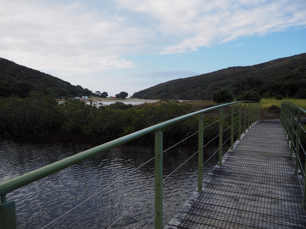 Cape Reinga Campsite.jpg