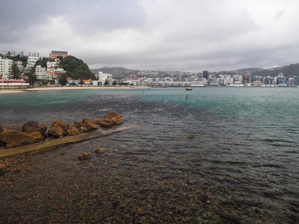 Oriental Bay.jpg